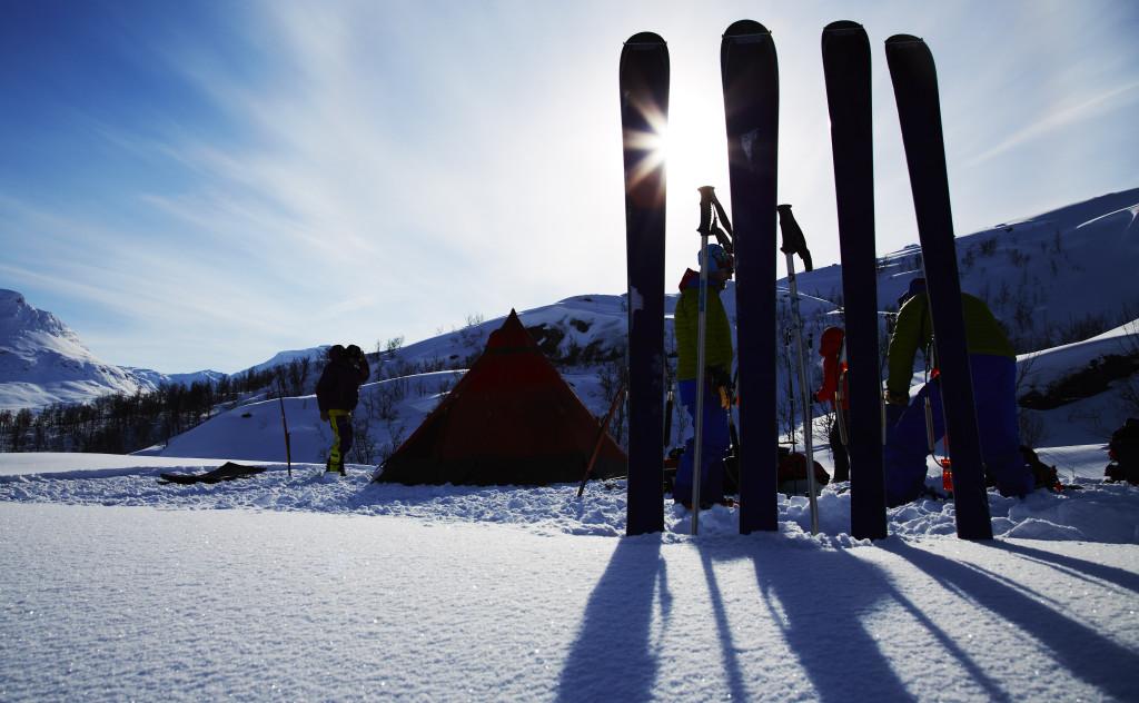 Arctisch in Riksgransen.