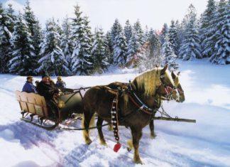 Ritje met de paardenkoets (c) DZT- TI Schluchsee
