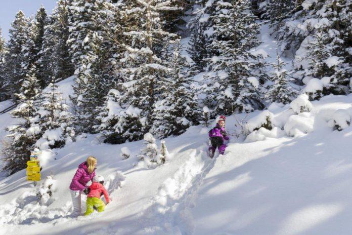 Skigebieden in Oostenrijk (c) Tirol Werbung