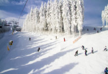 Skiën in Winterberg en Willingen