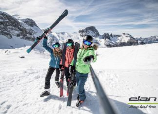 Win Elan ski